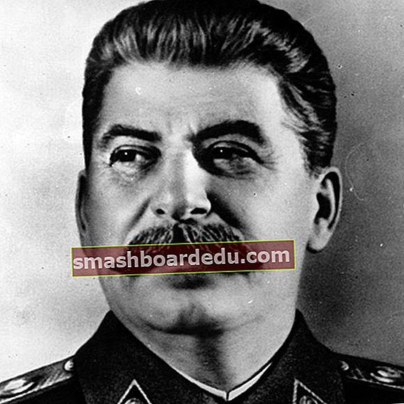 Joseph Stalin (politiker) Wiki, Bio, ålder, längd, vikt, fru, barn, etnicitet: 12 fakta om honom