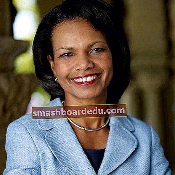 Condoleezza Rice (Politiker) Wiki, Bio, Höjd, Vikt, Nettovärde, Man, Karriär, Familj, Fakta