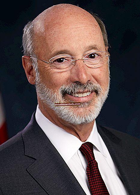 Tom Wolf (guvernör i Pennsylvania) Lön, nettovärde, bio, Wiki, ålder, fru, barn, karriär, fakta
