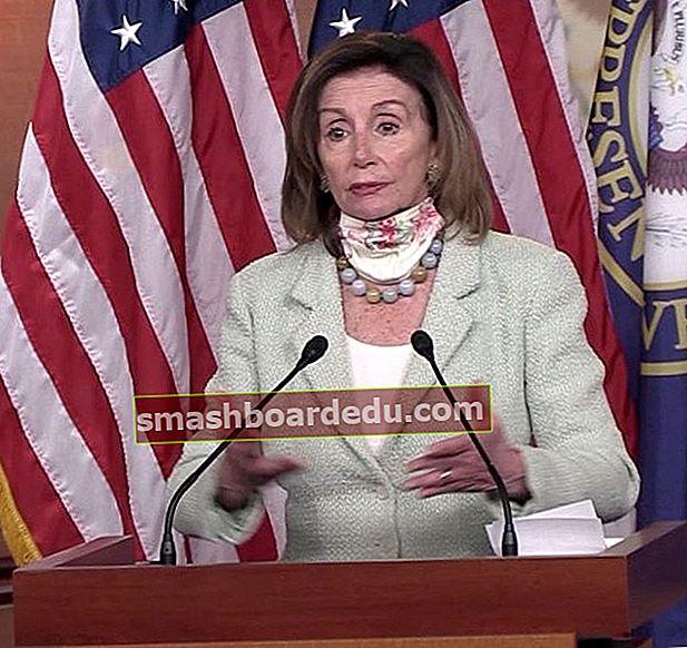 Nancy Pelosi (Politiker) Wiki, Bio, Höjd, Vikt, Make, Förmögenhet, Ålder, Familj, Barn, Fakta