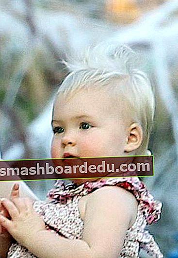 Sadie Grace LeNoble (Christina și Martyn LeNoble Fiică) Wikipedia, Bio, Vârstă, Mamă, Tată, Fapte