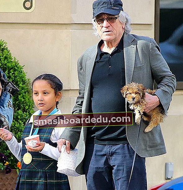 Helen Grace De Niro (Fiica lui Robert De Niro) Wiki, Bio, Vârstă, Înălțime, Greutate, Părinți, Valoare netă, Fapte