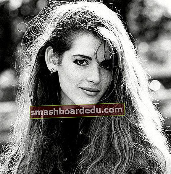 Cosima Thomasina Diamond (kći Nigelle Lawson) Wikipedia, Biografija, dob, visina, težina, činjenice